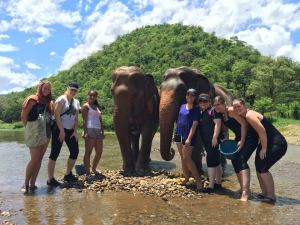 students with elephants at Elephant Nature Park